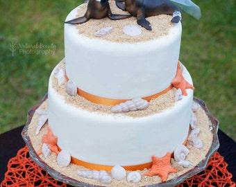 Seal-sea lion-ocean-beach-bride groom-beach wedding-animal-wedding-cake topper-gray seal-kissing-destination wedding-ocean themed-sea life