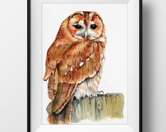 Tawny Owl Watercolor Digital Print