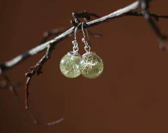 Lichen drops with eco resin, made in Ireland, botanical earrings, sterling silver earrings, nature inspired, unique gift, mint green, irish