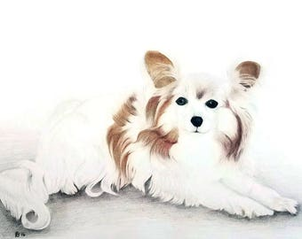 Pet Portrait Drawing, Dog Drawing, Drawing of Your Pet, Custom Pet Portrait, Pet Memorial Portrait, Pet Portrait Custom, Pet Drawing Custom