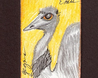 Aceo Colored Pencil Drawing of an Emu