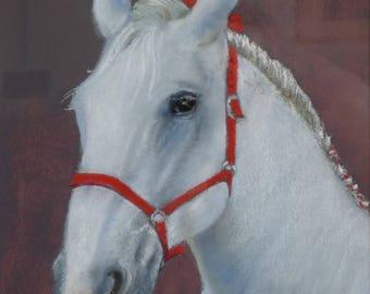 Animal portrait Percheron pastel