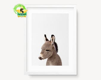 Donkey Print, Baby Animal Nursery Wall Art Decor, Printable Poster, Modern Minimalist, Babies Room, Baby Shower Gift, Colour Photo, Donkey