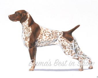 German Shorthaired Pointer Dog - Archival Fine Art Print - AKC Best in Show Champion - Breed Standard - Sporting Group - Original Art Print
