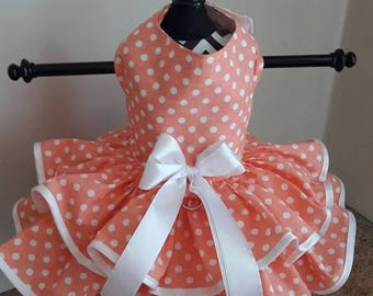 Dog Dress  Peach with white polkadots and  trim