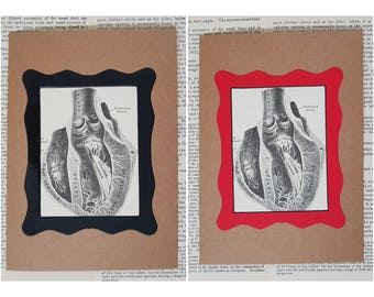 Romantic greetings card anatomical heart love romance present macabre humour funny Grays Anatomy medical illustration