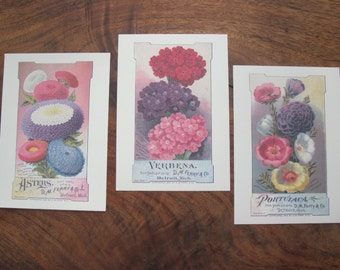 150 Reproduction Postcards Feaaturing Vintage Botanical Seed Packages