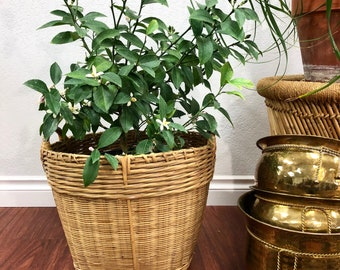 Large Vintage Woven Bamboo Planter Basket with Handles / Rattan Gathering Produce Basket