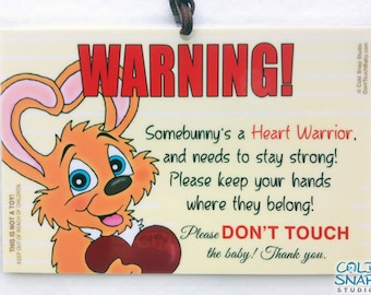 Heart Defect Awareness Don't Touch the Baby CHD Heart Warrior Signs - Somebunny's Heart - Gender-Neutral Bunny Rabbit Car Seat Tag for Baby