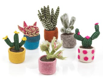 Cactus Collection - Needle Felted Cacti - Fake Plants - Trend Plants - Home Decor
