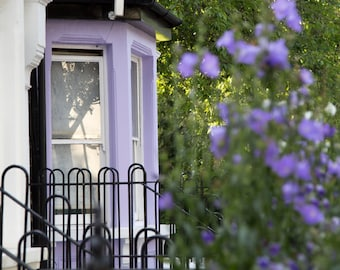 London House Print - Purple Flowers Photography