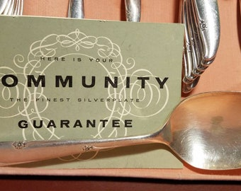 Silver Flower, Oneida Community Silver Plate Set For 8 with serving pieces, 46 pieces, Silverware, with original box, Excellent