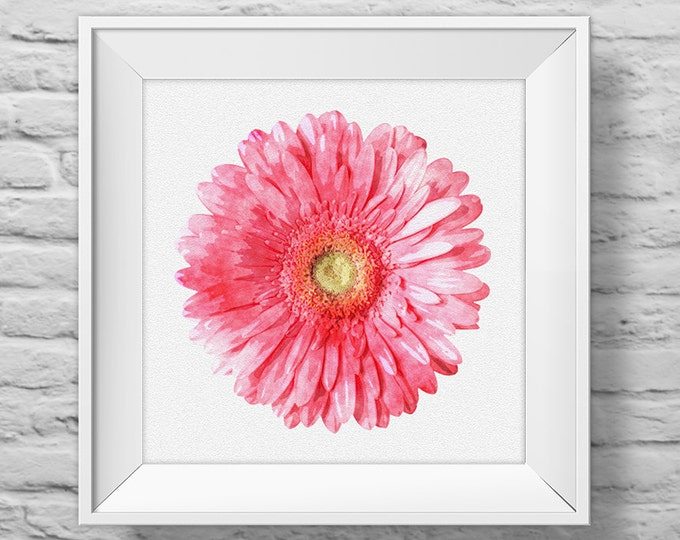 GERBERA DAISY in PINK - unframed square art print, inspirational, nature, floral, watercolor, photography, wall decor. (R&R0128)