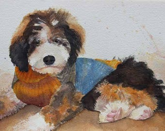 Bernedoodle Original Watercolor Painting Watercolor Art Pet Portraits Giclee Prints Fine Art Glass Magnet Carol Lytle Free Shipping #100