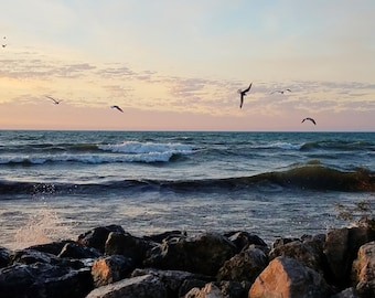 You can almost feel the breeze and hear the seagulls in this sunrise photo by Linda McAlpine available for INSTANT DOWNLOAD