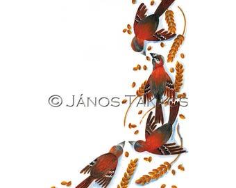 Birds nursery ilustration, print, high quality poster