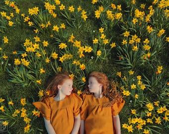 Ginger Daffodils