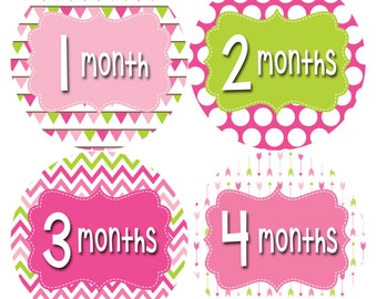 Monthly Baby Stickers Baby Month Stickers Baby Girl Month Stickers Monthly Photo Stickers Monthly Milestone Stickers 402