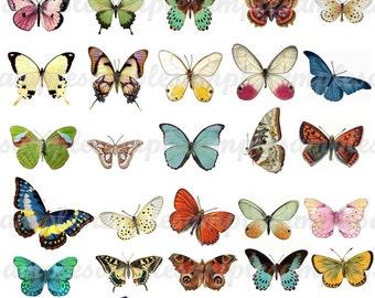 Digital Collage Sheet Butterflies wings JPEG-Instant Download butterfly clipart Digital Scrapbook Paper butterfly