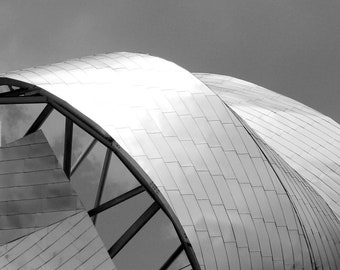 Chicago Minimalist Wall Art. Abstract Decor Photo Print. Frank Gehry Architecture. Abstract Art. Photography. Black and White Photo Print