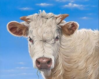 "oil painting, cow, 24"" x 24"",original,realism, trompe l'oeil, Ann Osenga,white cow,blue sky"