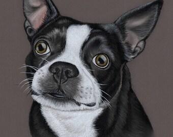 Custom Dog portrait, Pet portrait, Dog Drawing, Dog art, art by Karly Marie