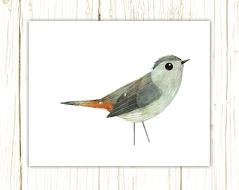 Catbird Print -- bird art -- colorful bird art by stephanie fizer coleman illustration
