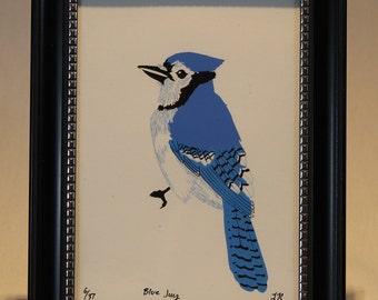 Blue Jay W/ Frame