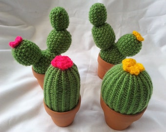 Cactus pin cushion/ Earring tidy/ Mothers Day gift /sewing aid / Gardeners gift / birthday gift