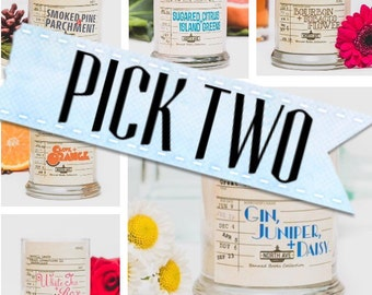 Choose Two / Book Inspired Candles / Any 2 candles from the Banned Books Collection