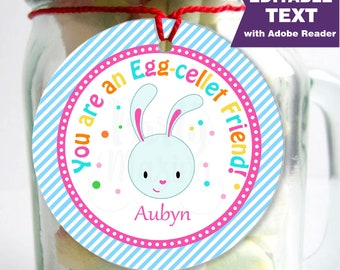 Editable Printable Easter Tag , Party Favor Sticker,You are an Egg-cellent Friend, Round or Square Topper, Instant Download  -D208