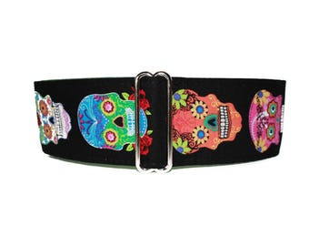 Skull Martingale Collar, Day of the Dead Martingale Collar, Skulls Dog Collar, Cinco de Mayo Martingale Collar Greyhound, Cinco de Mayo Dog