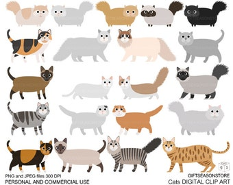 Cats Digital clip art part 1 for Personal and Commercial use - INSTANT DOWNLOAD