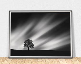 Tree Art Print - Black And White, Tree Print, Tree Silhouette, Sky Art, Night Sky Art, Sky Clouds Art, Tree Wall Art, Printable Art