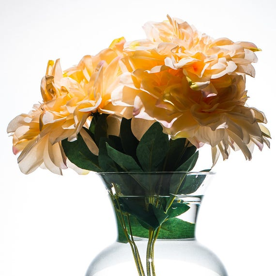 Submersible silk flowers gallery flower decoration ideas submersible silk flowers choice image flower decoration ideas submersible silk flowers images flower decoration ideas submersible mightylinksfo