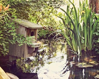 Pond Garden Birdhouse Photograph - 5x7 Nature Photo Art - Serene Soothing Photography - Green Summer Foliage - Wooden Bird House Pond Whimsy