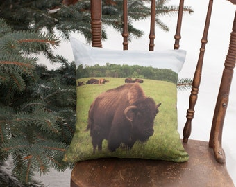 Southwestern Decorative Pillow Cover, Bison Photo Throw Cushion Case, Rustic Man Cave Decor, Gift Idea for Outdoorsman, Adventurist Gift