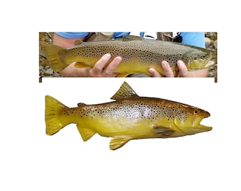 Brown Trout Custom Carved Catch and Release Fish Replica Rainbow Brook Steelhead direct from Professional Chainsaw Artist Brad Martin