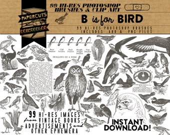 B is for Bird - 99 Hi-Res Photoshop Brushes / Clip Art / Image Pack - Includes .ABR and .PNG Files