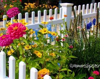 A Flower Lovers Garden Photo Print