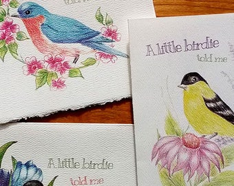 "Friendship Cards - ""A little birdie told me"" Set of 3 watercolor texture cards. Robin, Finch, Bluebird Spring Birds"