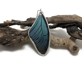 Butterfly jewelry, Real Butterfly jewelry, insect jewelry, butterfly wing Necklace, handmade real butterly jewelry, real butterfly pendant