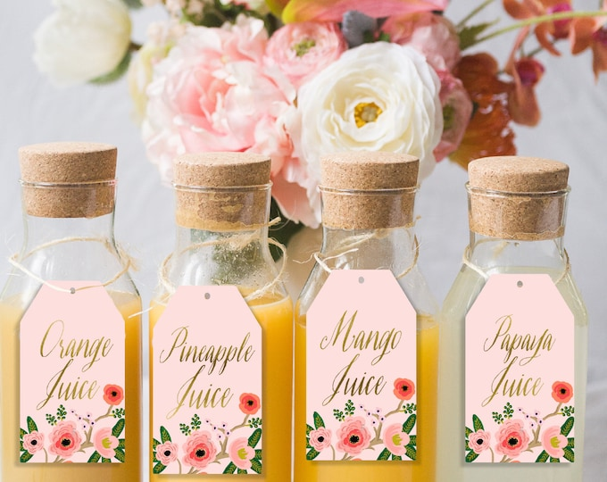 Mimosa Bar Drink Tags, Mimosa Bar Sign, Champagne Bar Labels, Mimosa labels,  Drink Labels, Mimosa Tags, Juice Tags, Mimosa Sign