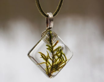 Moss necklace Woodland Botanical necklace jewelry Birthday gifts Cottage chic Rustic real moss jewelry Gift for her Crystal necklace