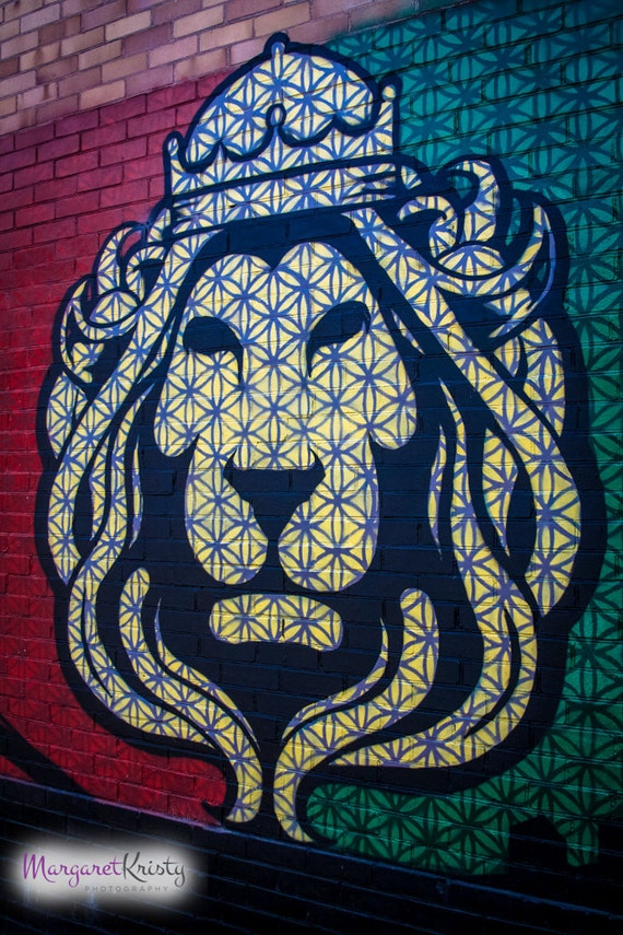Rasta Lion graffiti street art city rastafari photography