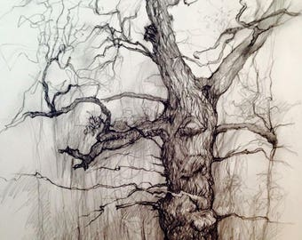 The one with Mr Tickle arms - Blenheim tree series.