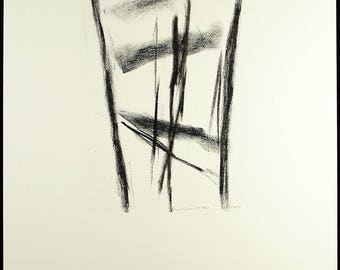 Tree, 1977/1993. Collotype by David RABINOWITCH