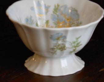 Vintage Haviland Limoges Hand Painted Sugar Bowl