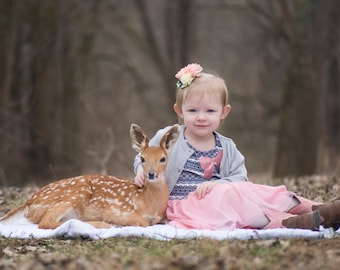 PNG Overlay of Baby Fawn - Baby Deer - PNG - deer overlay - animal overlay - Insert into your favorite photo - high resolution