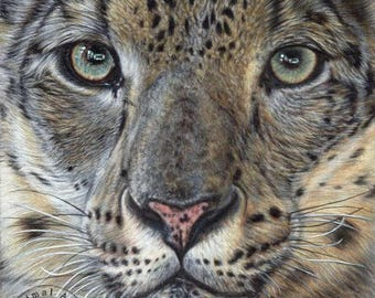 Snow Leopard - Hand signed small fine art print - 'Hear My Voice'